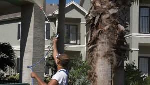 Los rociadores de pintura agilizan el trabajo.