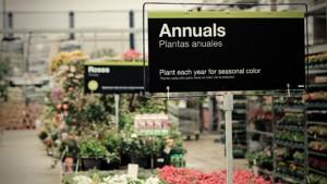 Productos de jardinería y plantas de vivero de marcas reconocidas