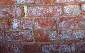 Cómo eliminar y prevenir la eflorescencia en los ladrillos