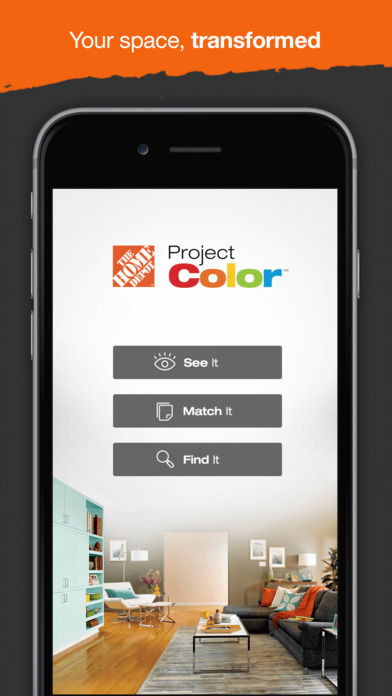 THD Project Color